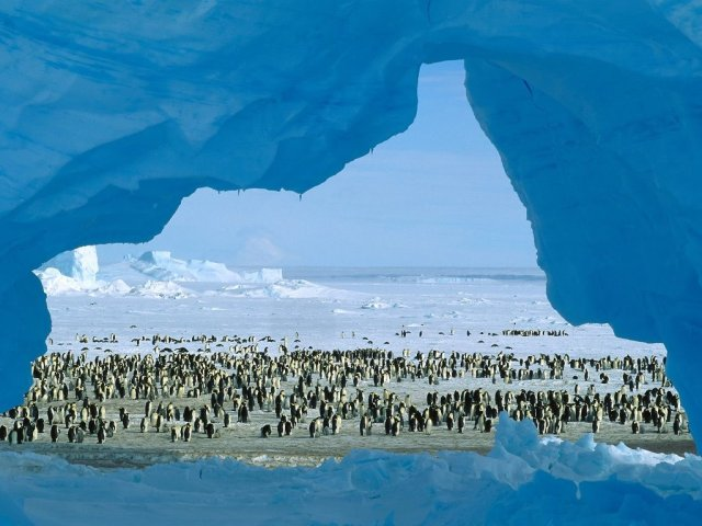 atka-bay-weddell-sea-antarctica